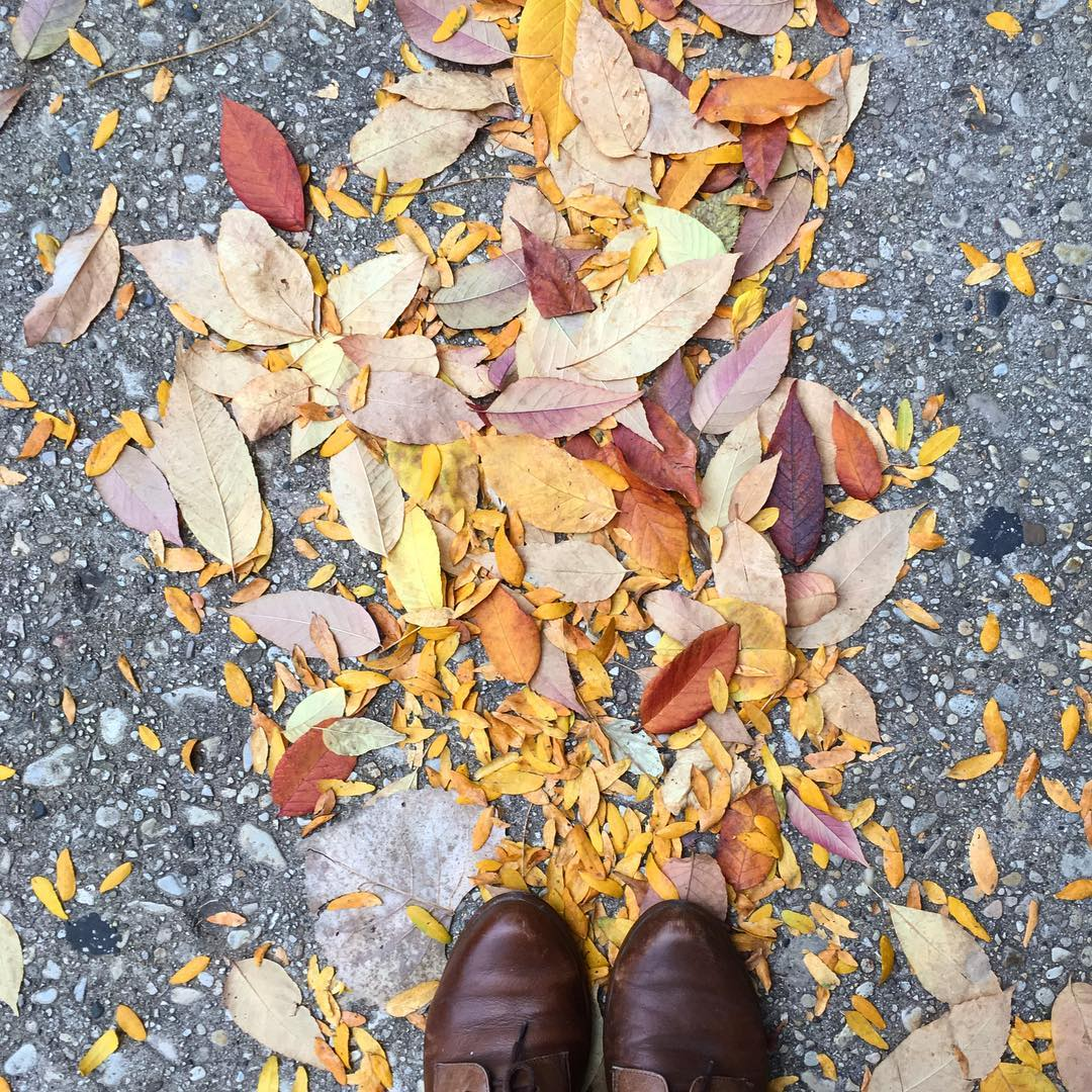 shoefie with fall leaves